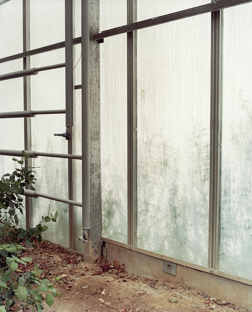 charles_freger_les_fleurs_du_paradis_2005_2008_52