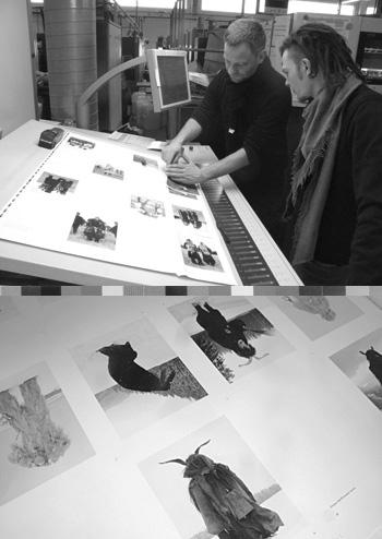 Wilder Mann printing freger