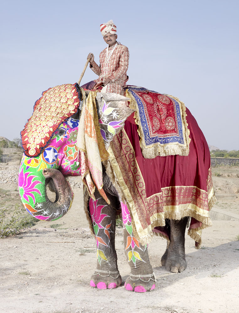 charles_freger_painted_elephant_002