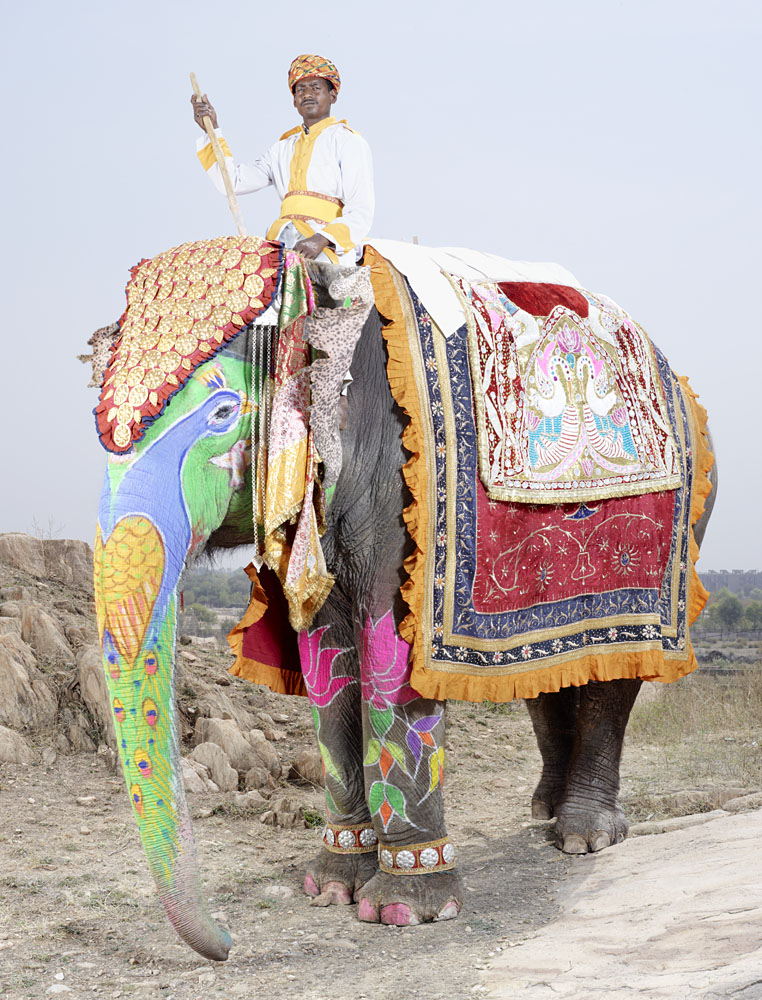 charles_freger_painted_elephant_004