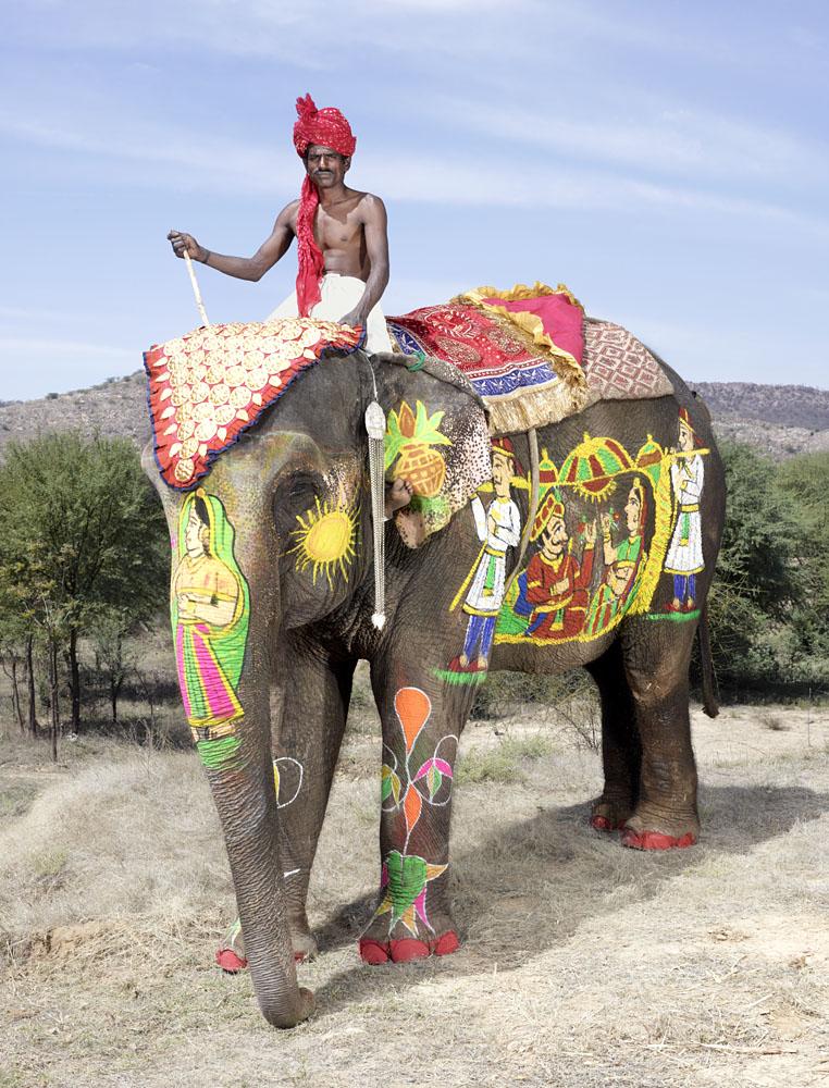 charles_freger_painted_elephant_015
