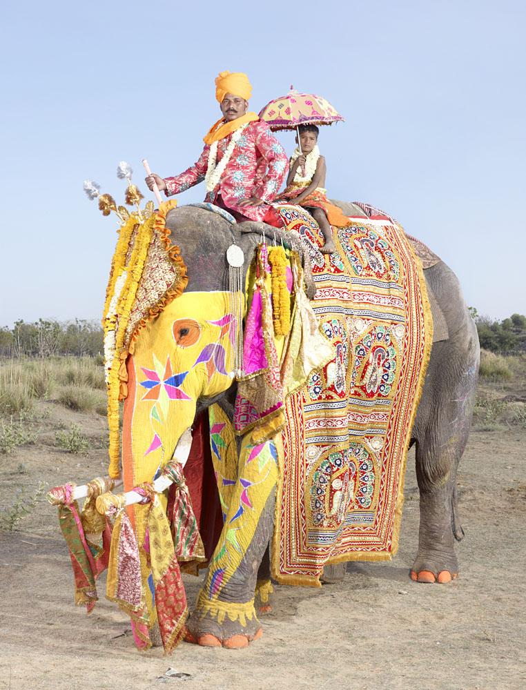 charles_freger_painted_elephant_018