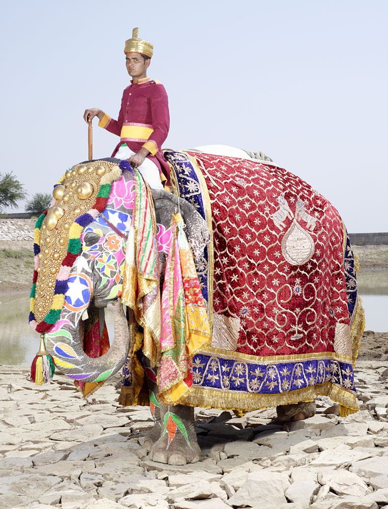 charles_freger_painted_elephant_019