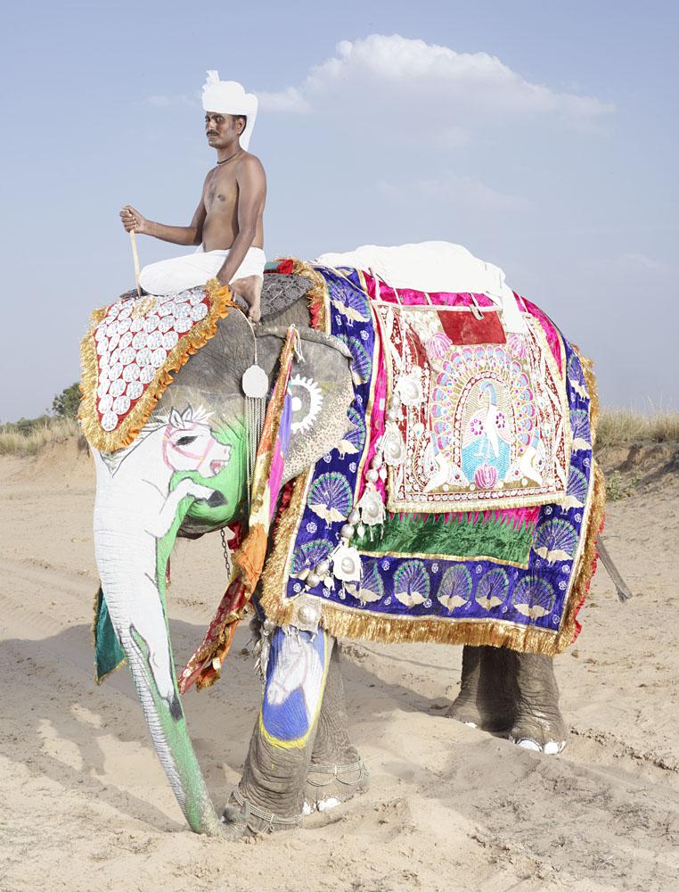 charles_freger_painted_elephant_010
