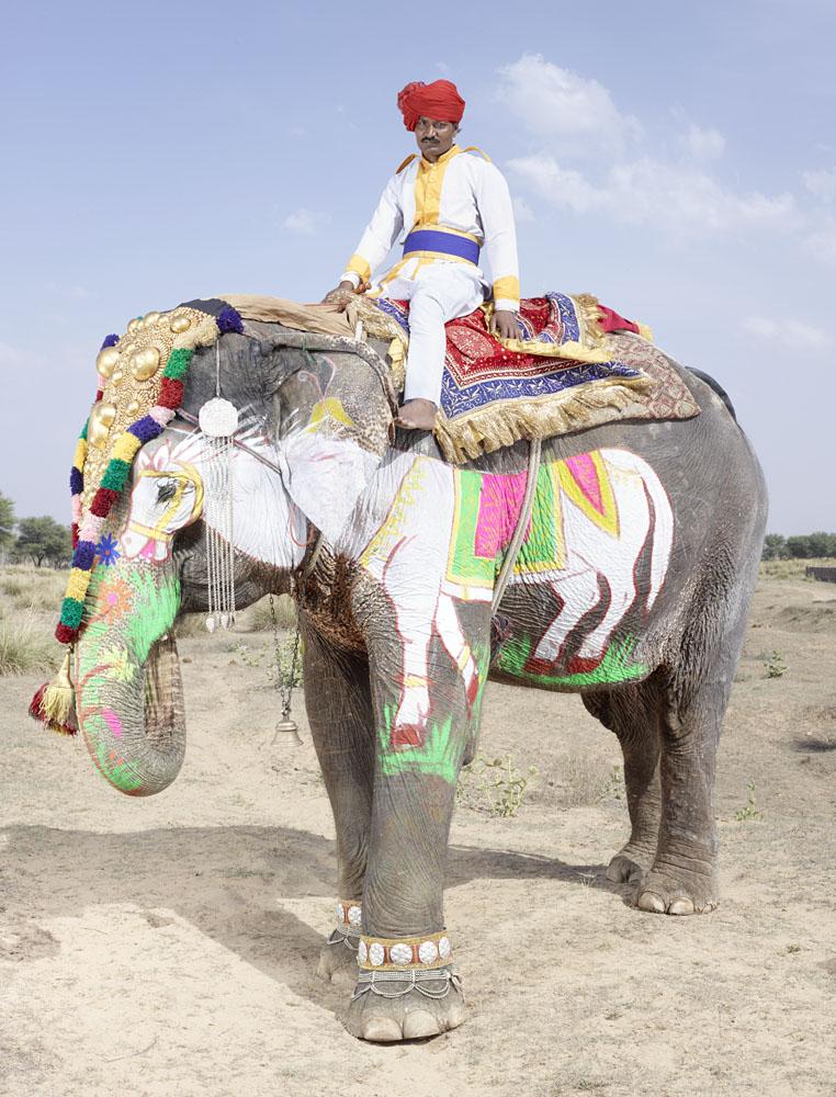 charles_freger_painted_elephant_012
