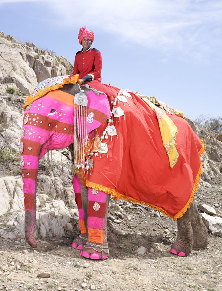 charles_freger_painted_elephant_016