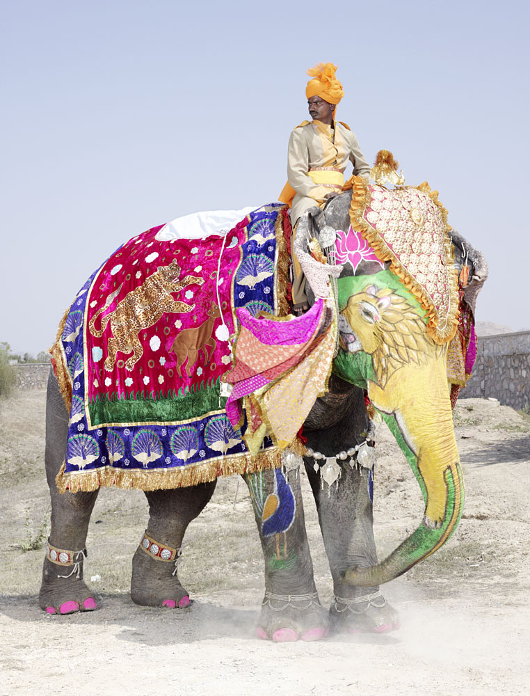 charles_freger_painted_elephant_020